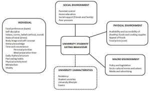 _Figure 1 Factors influencing eating behaviours of university students_CN
